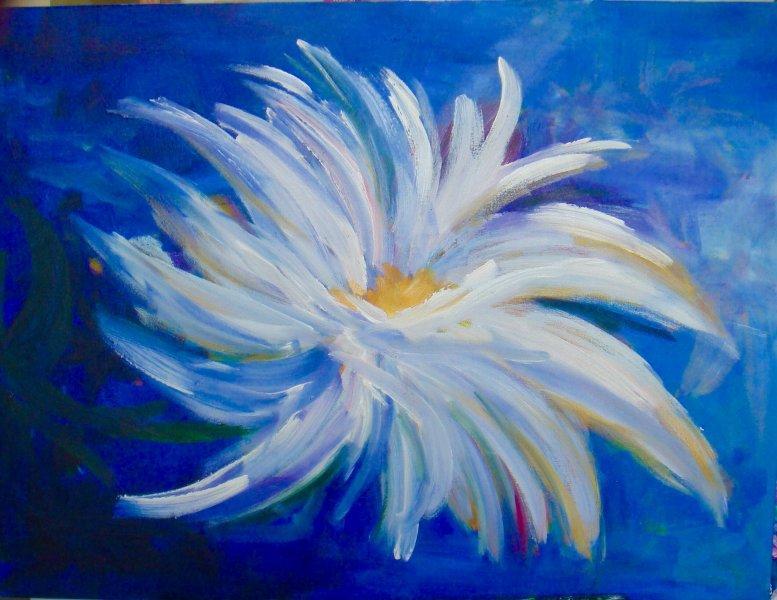 Flor da Paz